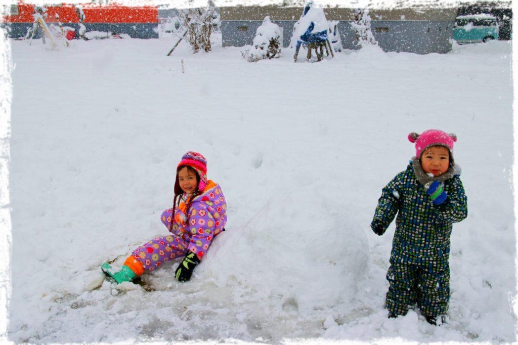 北海道、倶知安、たくさんの雪が積もりました。