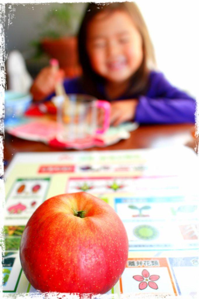 りんご1つでできる親勉、理科