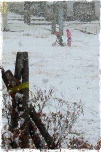 北海道、倶知安。雪の中でランバイク。
