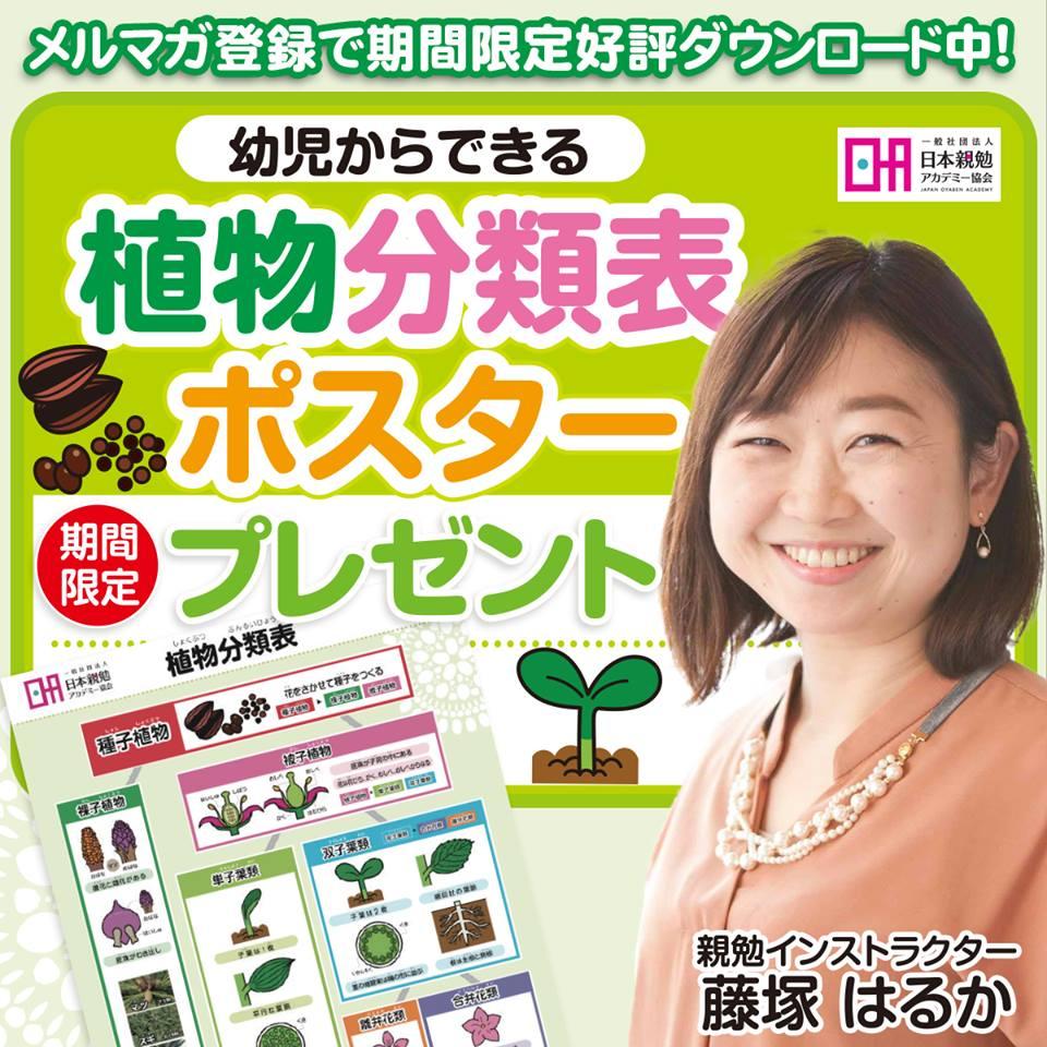 植物分類表ポスター プレゼントキャンペーン、親勉インストラクター 藤塚はるか