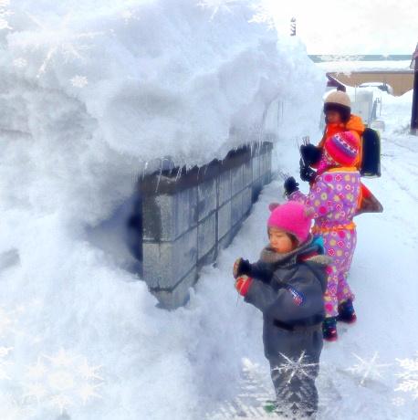 親勉、北海道。松本まきこ。ようやく春が近づいてきて、雪解け、つららの季節イン。 子供たちはつらら採取に忙しい。