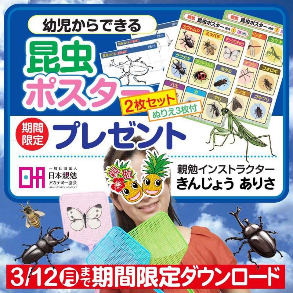 沖縄 親勉インストラクター きんじょうありさ 昆虫ポスタープレゼントキャンペーン