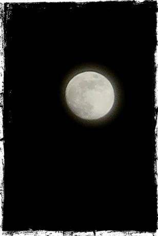今月の満月は4月30日9:58、さそり座の位置で満月。月の入りの後。北海道、倶知安にて。