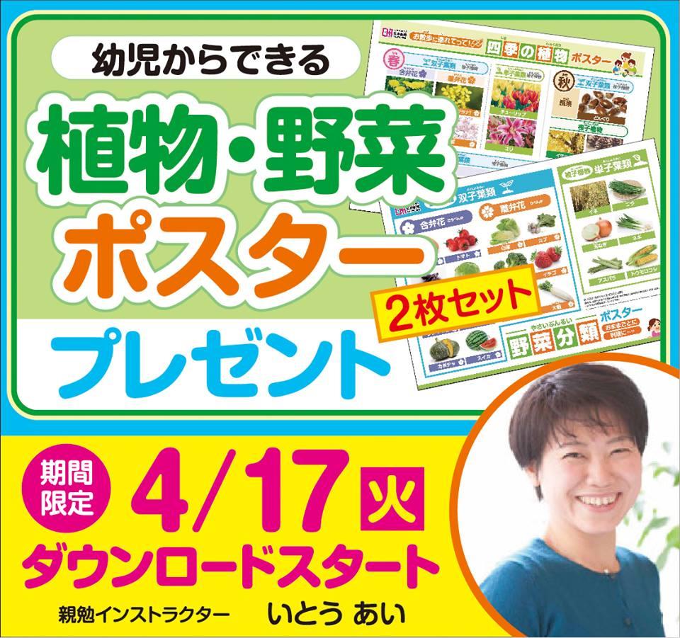 親勉 東京インストラクターいとうあい 植物野菜ポスター2枚セットプレゼント
