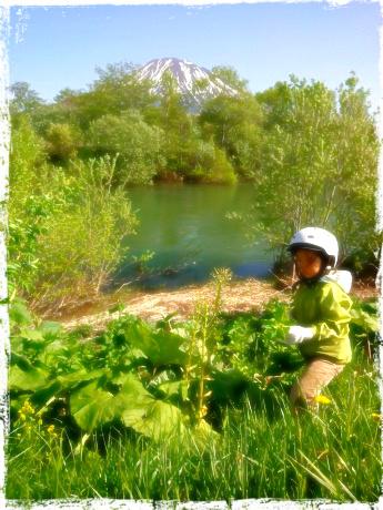 近所の河原で、チビ達と山菜物色中。地球まるごと遊び場に 自然と共に生きる『親勉』