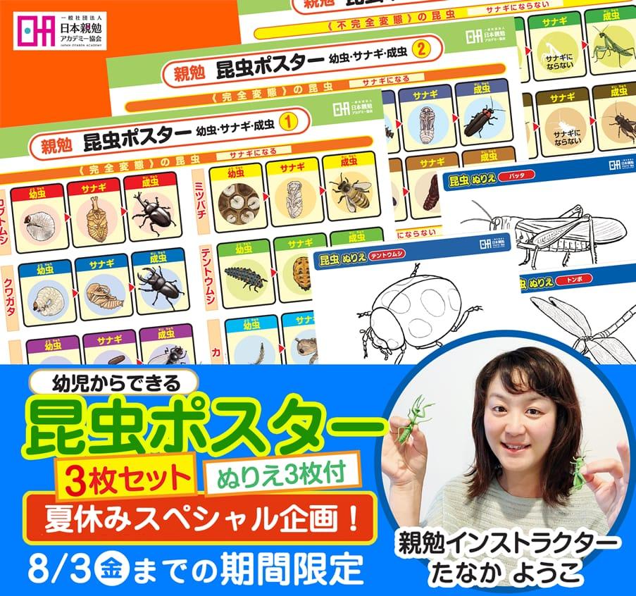 香川 たなかようこ親勉インストラクター幼児からできる昆虫ポスター3枚セットぬりえ3枚付きプレゼント
