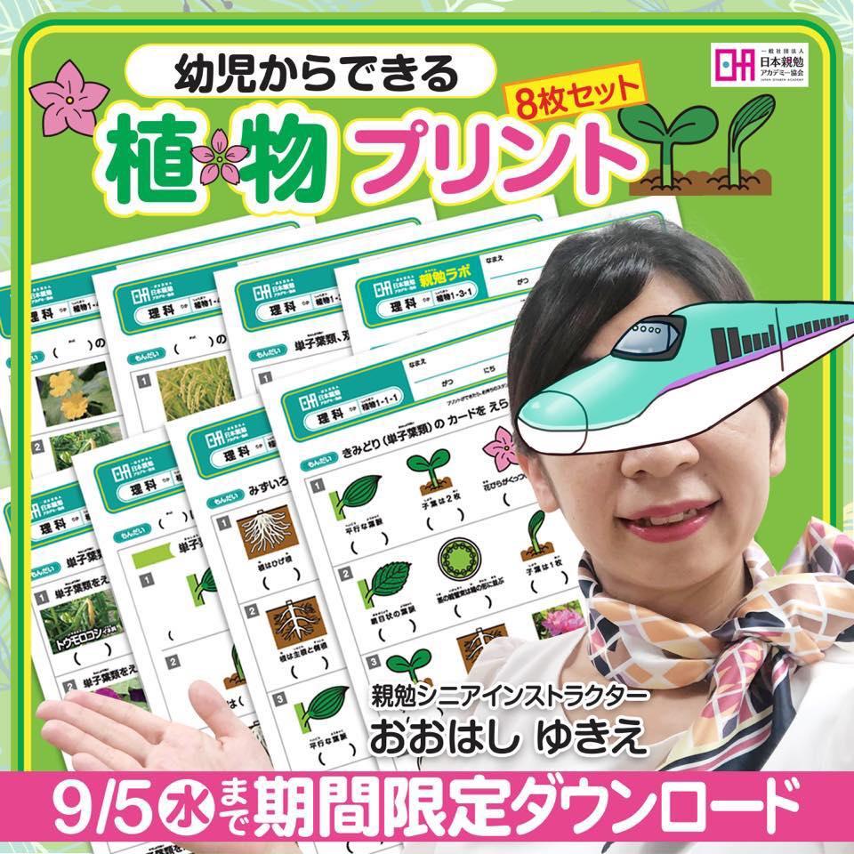 幼児からできる 植物プリント8枚セットプレゼント!