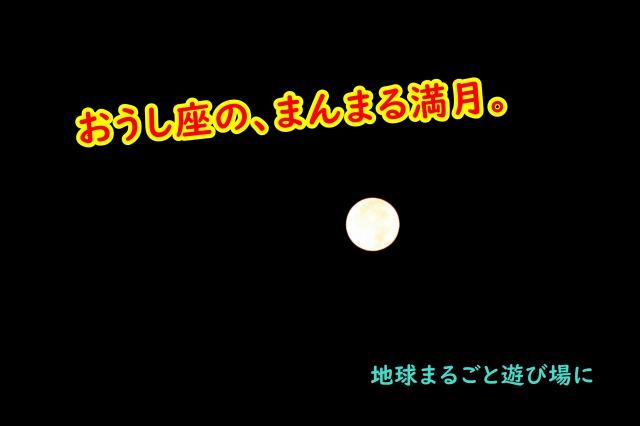 おうし座のまんまる満月、嬉しいメッセージいただきました! 地球まるごと遊び場に 松本まきこ