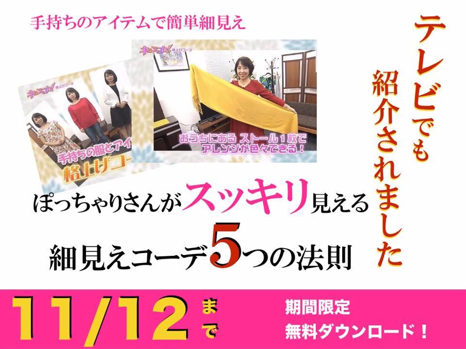 ぽっちゃりさんがスッキリ見える細見えコーデ5つのヒミツ小冊子プレゼント、 冨澤 理恵