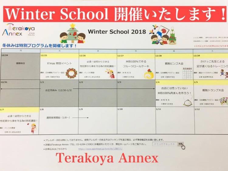 Terakoya AnnexのWinter School 受付開始 テラコヤアネックス 親勉学童、保育園、塾、東京