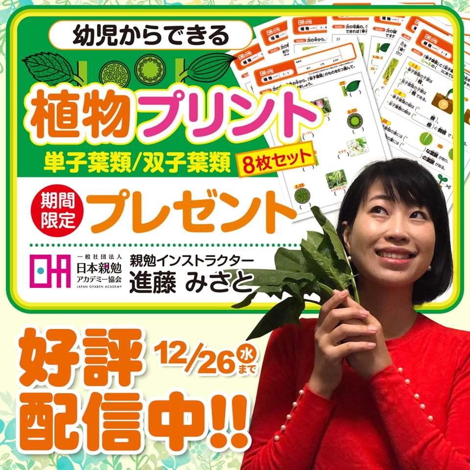 幼児からできる 植物プリント8枚セット単子葉類双子葉類 親勉インストラクター新藤みさと 香川、プレゼント