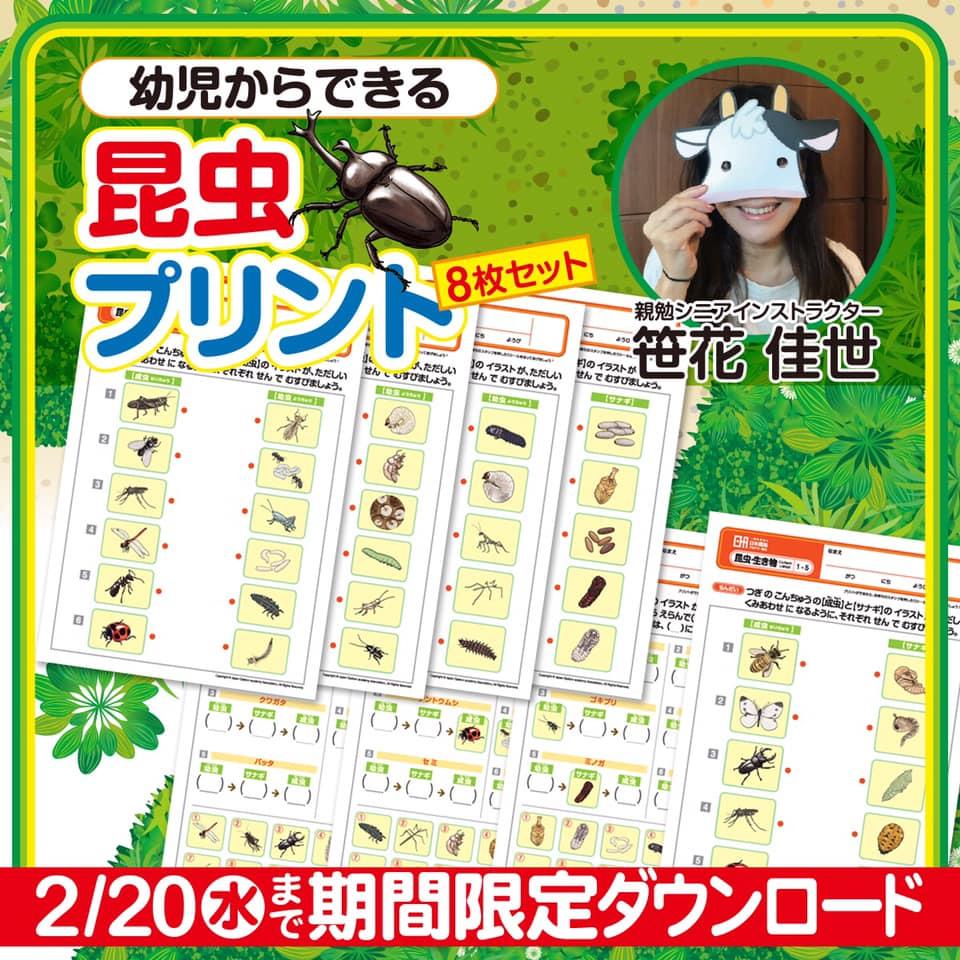 幼児からできる 昆虫プリント 8枚セットプレゼント 親勉インストラクター笹花佳世