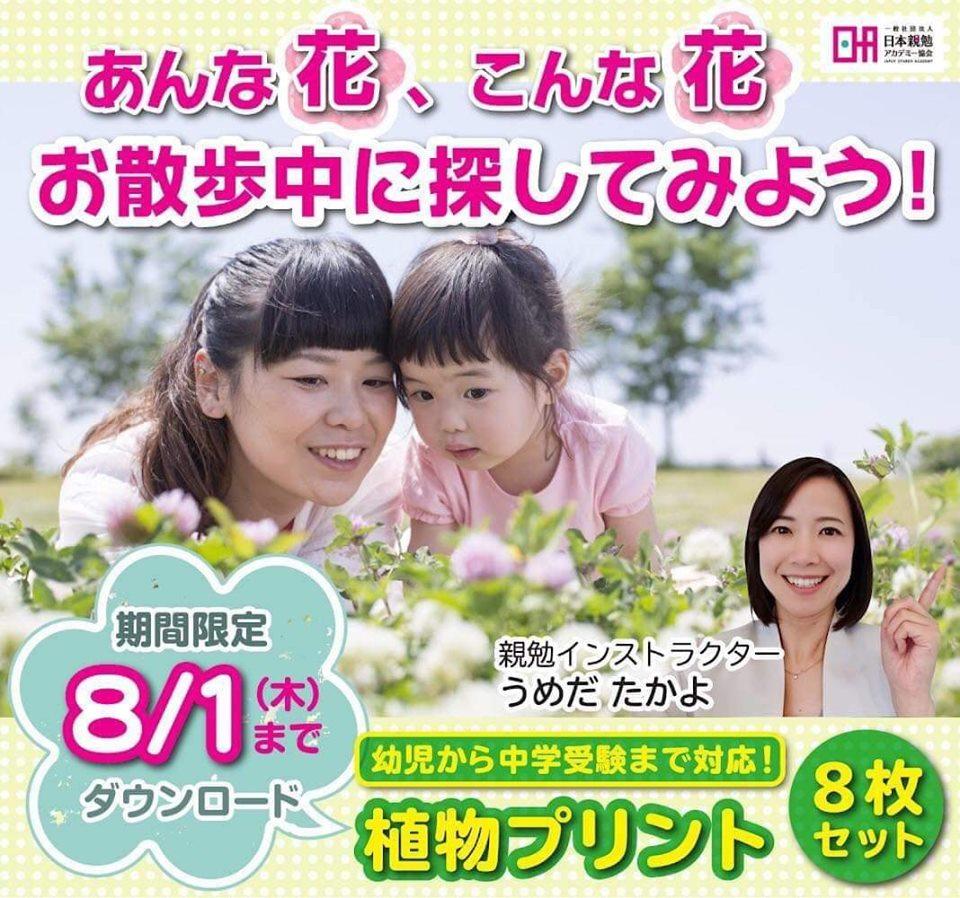 幼児からできる【親勉】昆虫ポスター3枚セット、ぬりえ3枚付き ◇ プレゼント!