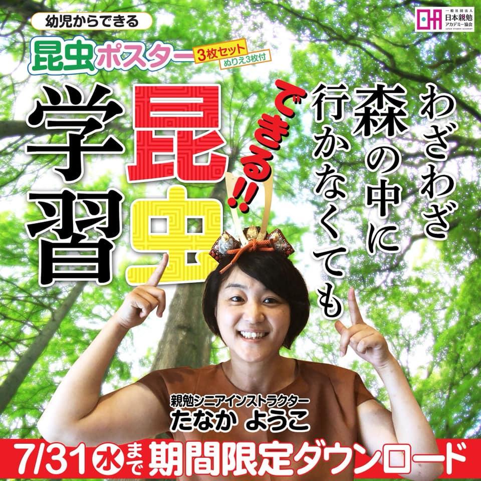 幼児からできる昆虫ポスター3枚セット ぬりえ3枚付き プレゼント 香川 親勉インストラクターたなかようこ