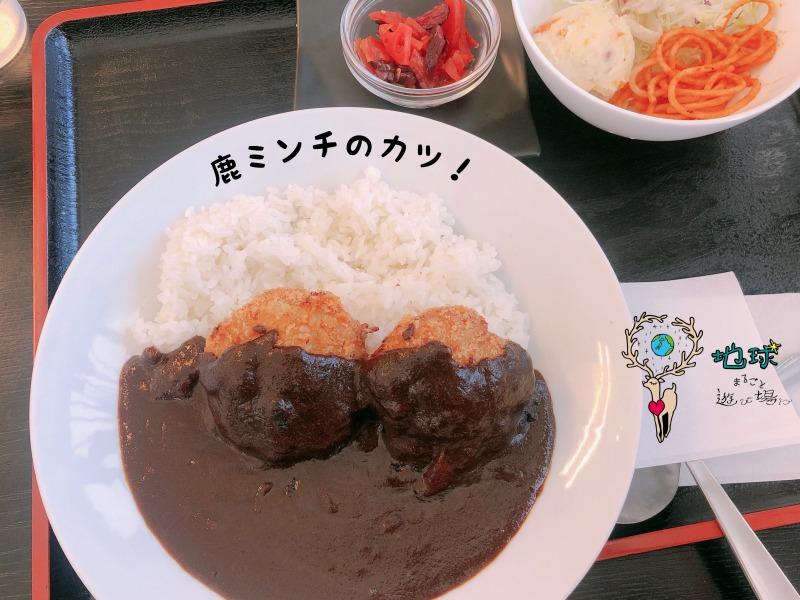 北海道室蘭市で食べトレ初級講座、中級講座 セット割キャンペーン 開講 地球まるごと遊び場に 松本まきこ