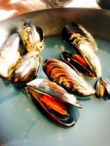狩猟採集、自給自足の夜ご飯。北海道のムール貝、エゾイガイ、かな?