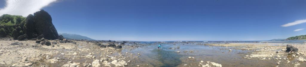 高級食材モクズガニ 上海ガニの近縁種。淡水から海水で生きる強い生き物。本日の猟場へ。北海道 地球まるごと遊び場に