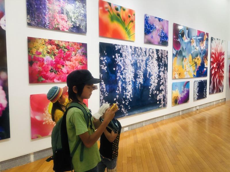 札幌芸術の森で開催中の蜷川実花展。地球まるごと遊び場に