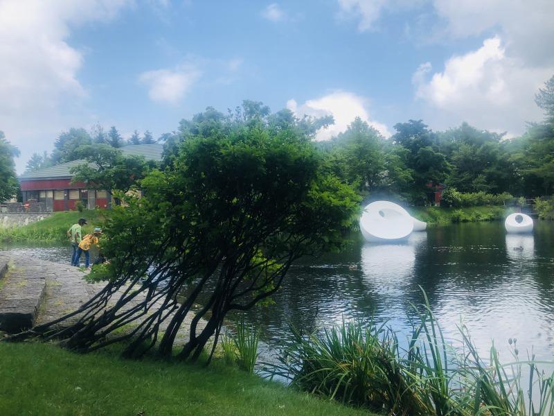 札幌芸術の森で開催中の蜷川実花展。美術館前に拡がる池で鯉とカモと遊ぶ。地球まるごと遊び場に